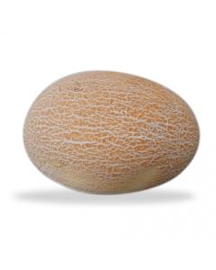 Sweet melon-Yellow melon
