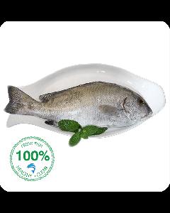 Farsh Fish