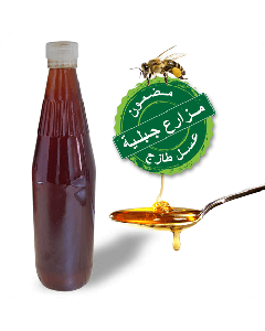 Seder Honey From Maintain Farm